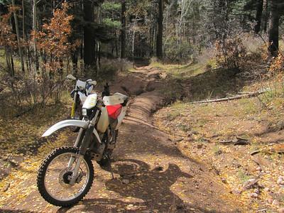 Jemez Mtns. - McMillan-Church-Rito del Indio-San Miguel-Bales Canyons Trailride  10-20-14