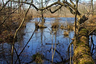Murderkill River & Killens Pond State Park