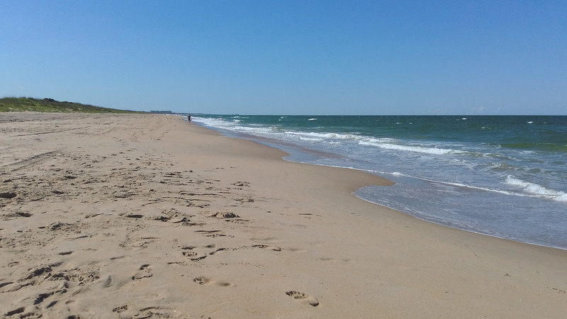 The beach at Back Bay National Wildlife Refuge