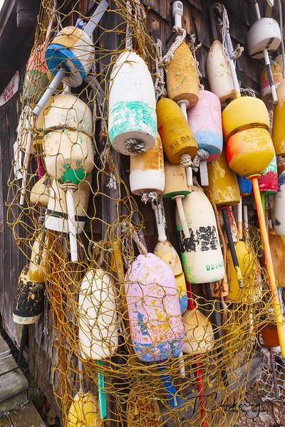 Cape Neddick Lobster Pound Lobster Floats 2.jpg