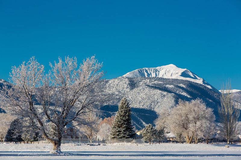 Mount Shavano, Salida, CO