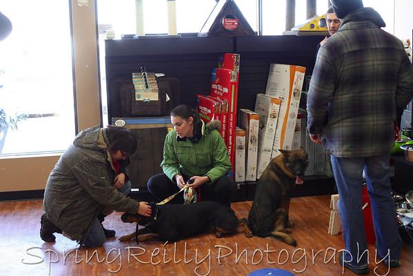Sit Means Sit Dog Training @ Pet Valu