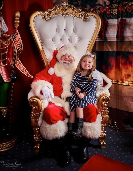 Meadowview Christmas_2018©CAL_0331.jpg