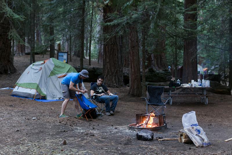 Sequoia_0734.jpg
