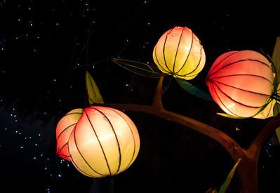 Chinese Lanterns Dallas