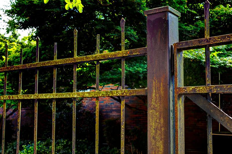 4. Fence.jpg