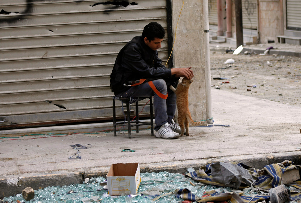 . A member of Free Syrian Army pats a cat in Aleppo October 22, 2012. REUTERS/Zain Karam