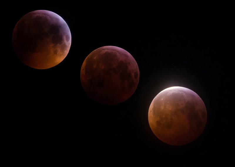 eclipse x 3_edited-1-sharpen-sharpen_edited-1.jpg