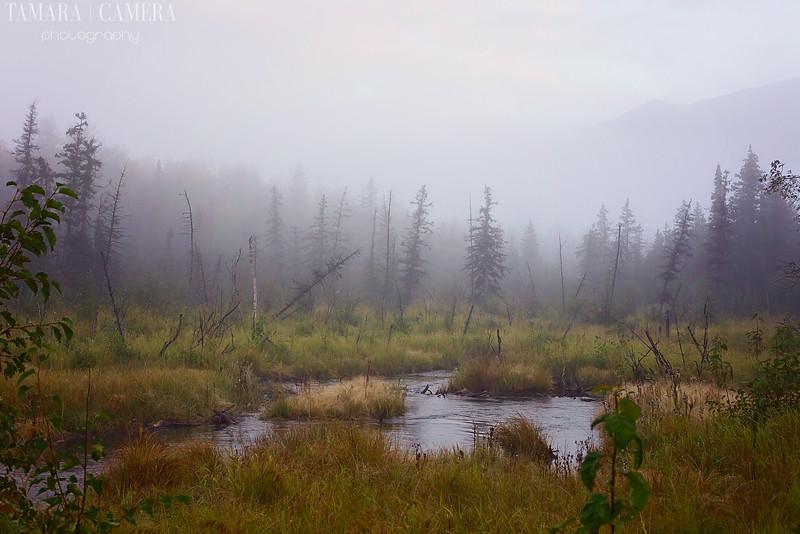 Eagle River6-5-2.jpg