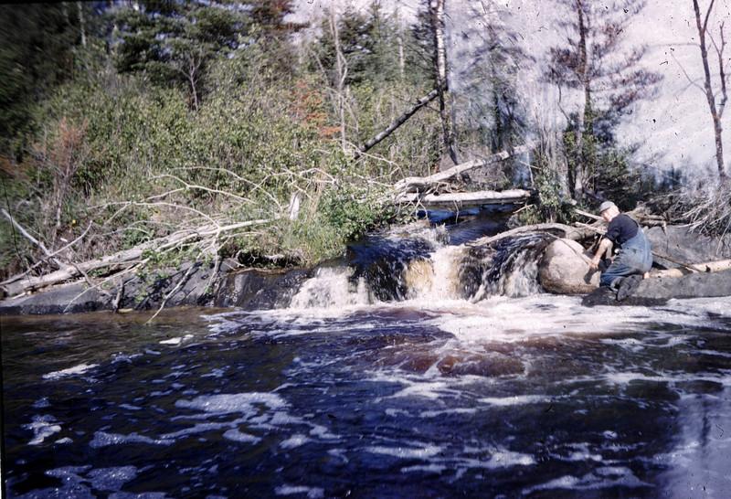 Adams_river02.jpg