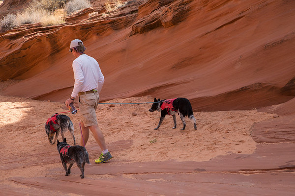 exploring_waterholes_canyon_b_and_dogs_2018