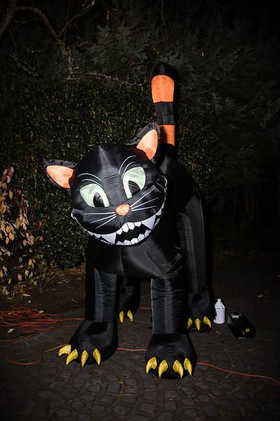 Nouredine Halloween (34 of 97).jpg