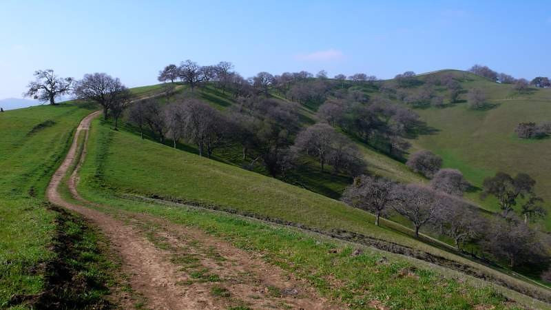 ridge-trail-02-1.jpg