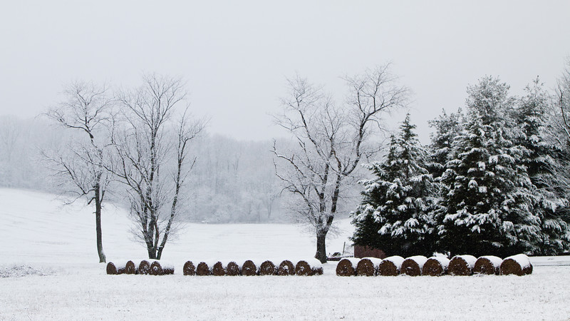 Farm in Snow (042-366)