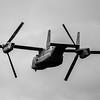 V22_Osprey-003_BW