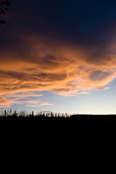Scroghill Sunset-2