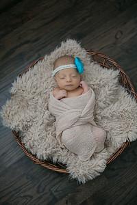 Parker Peters Newborns
