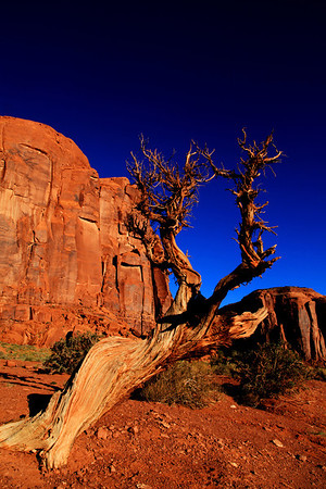 Monument Valley 272A.jpg