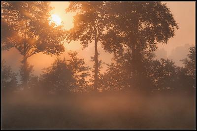 Ochtendlicht/Morninglight