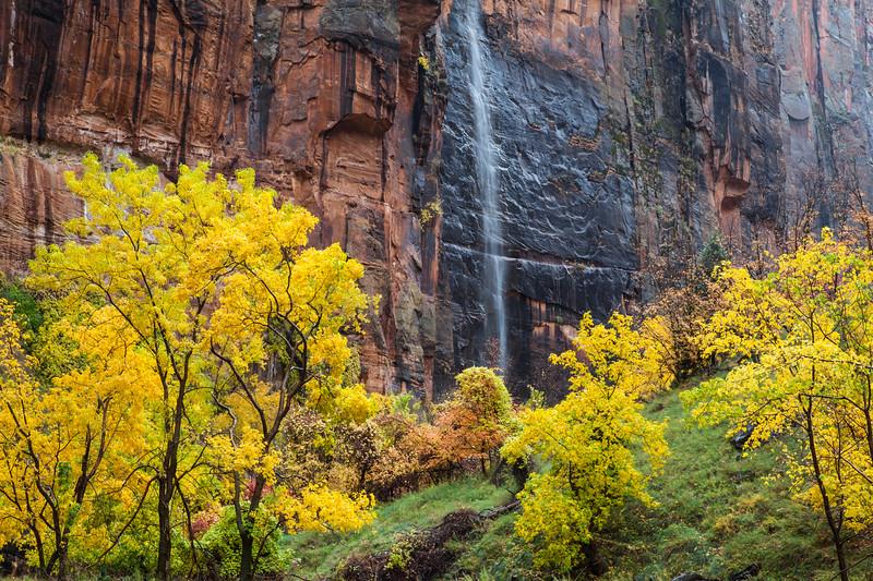 Ephemeral fall at the River Walk