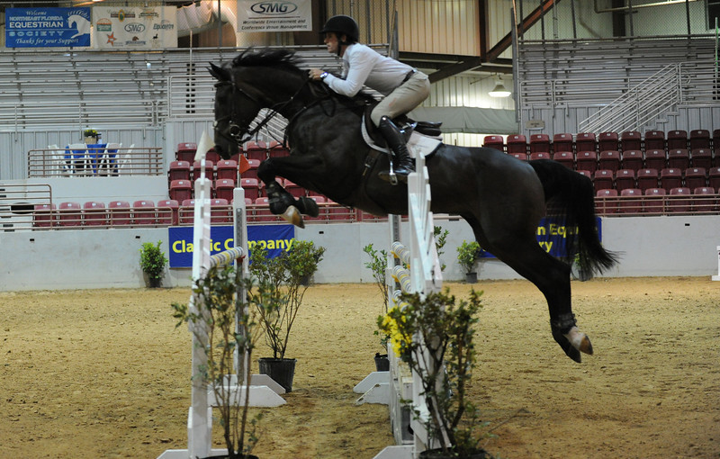 Horse show (96).jpg
