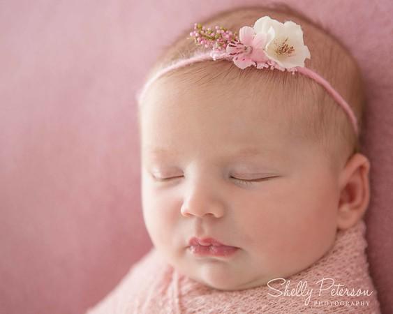 Bracco Newborn