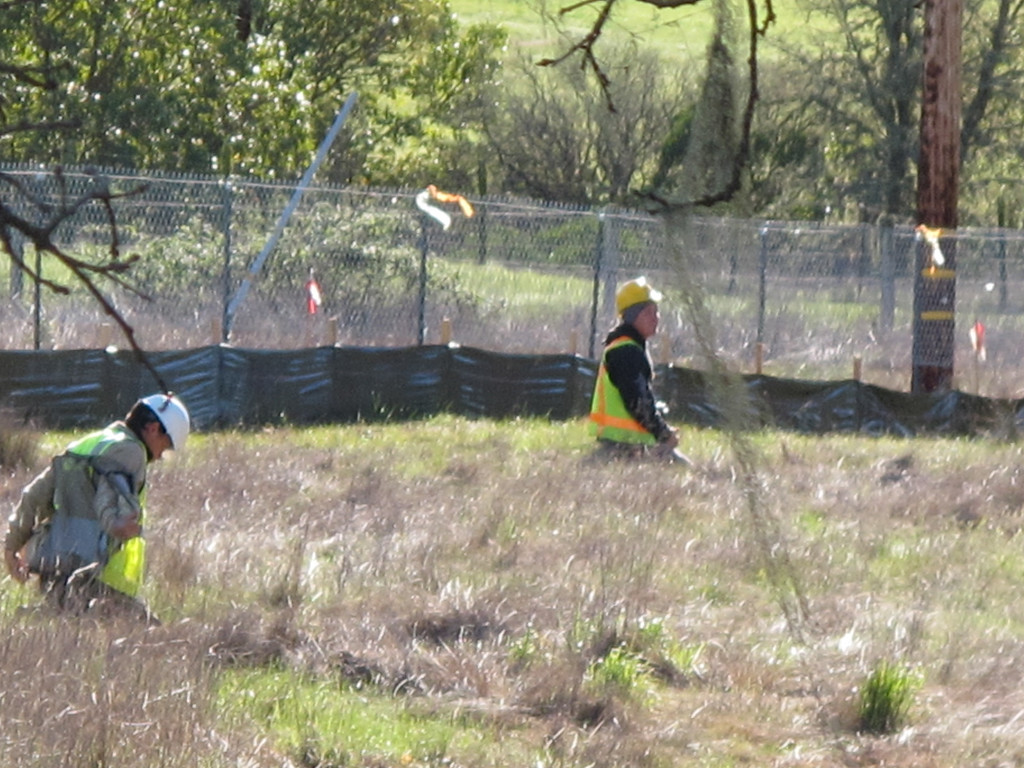 . More CalTrans biologists looking for wildlife activity.