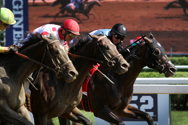 Mind Control (Stay Thirsty) and jockey John Velazquez win the H. Allen Jerkens (Gr I) at Saratoga Racecourse 8/24/19. Trainer: Gregg Sacco. Owner: Red Oak Stable & Madaket Stables LLC