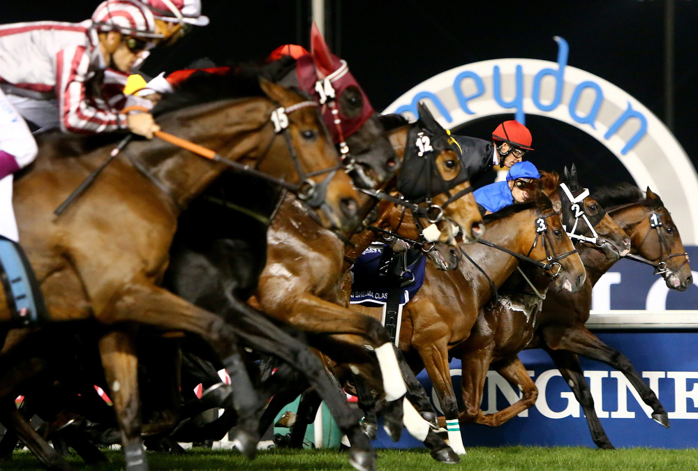 . Jockeys compete in the Dubai Sheeba Classic race held on Dubai World Cup day on March 29, 2014 at Meydan racecourse in Dubai. A cosmopolitan gathering of horses from seven different countries contest the US$10 million Emirates Dubai World Cup at Meydan racecourse.  (MARWAN NAAMANI/AFP/Getty Images)