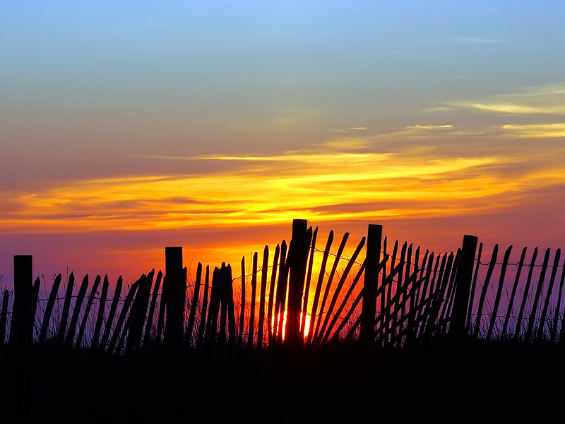 Seaside sunrise.jpg