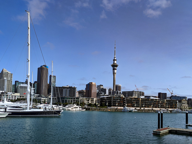 Sky Tower from Viaduct Basin.