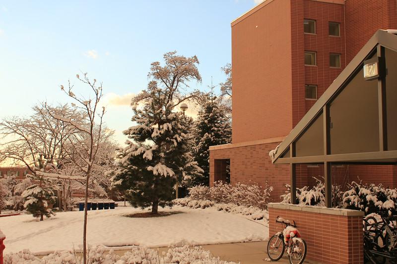 Winter_Scenery_12_19_2012_4083.JPG