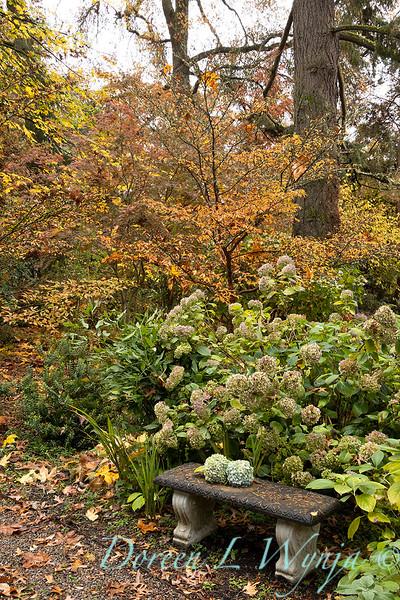 Dietrick fall garden_2068.jpg