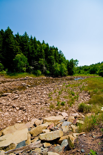 A nearly dry stream bed