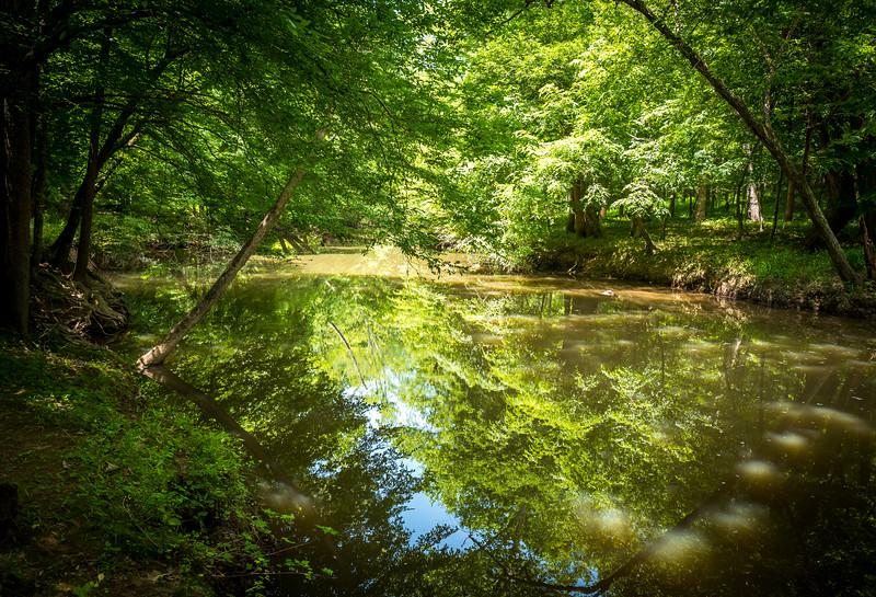Eno River State Park, NC