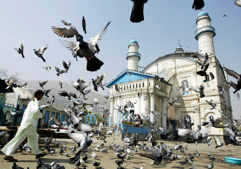. Pigeons fly outside the Shah-e Doh Shamshira mosque as Afghans head for morning prayers on Eid-al-Fitr in  Kabul, Afghanistan, Thursday, August, 8, 2013. Eid al-Adha is a religious festival celebrated by Muslims worldwide at the end of the holy fasting month of Ramadan. (AP Photo/Ahmad Nazar)
