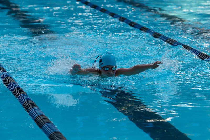 lcs_swimming_kevkramerphoto-070.jpg
