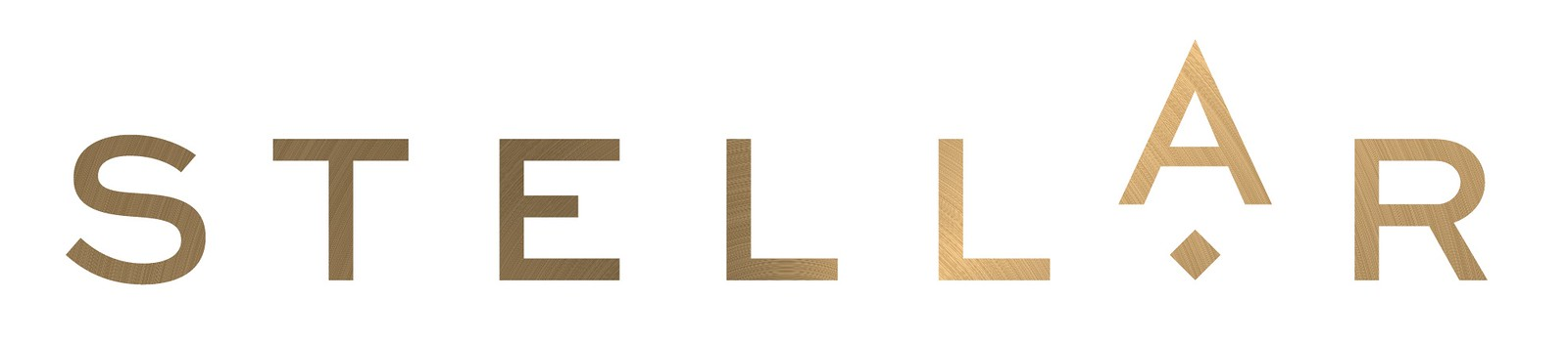 Stellar logo (photo credit: Stellar)