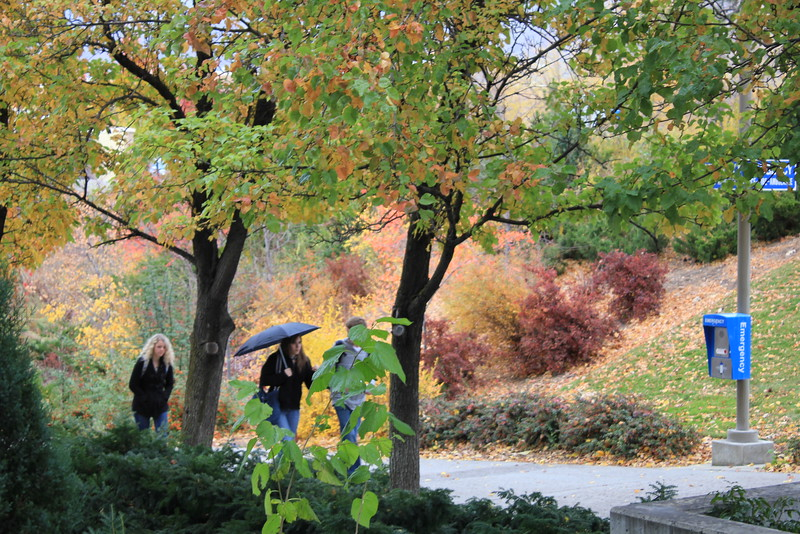Fall_Scenery_4520.JPG