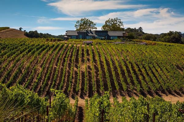 MacRostie Winery: Day 2  9.11.18