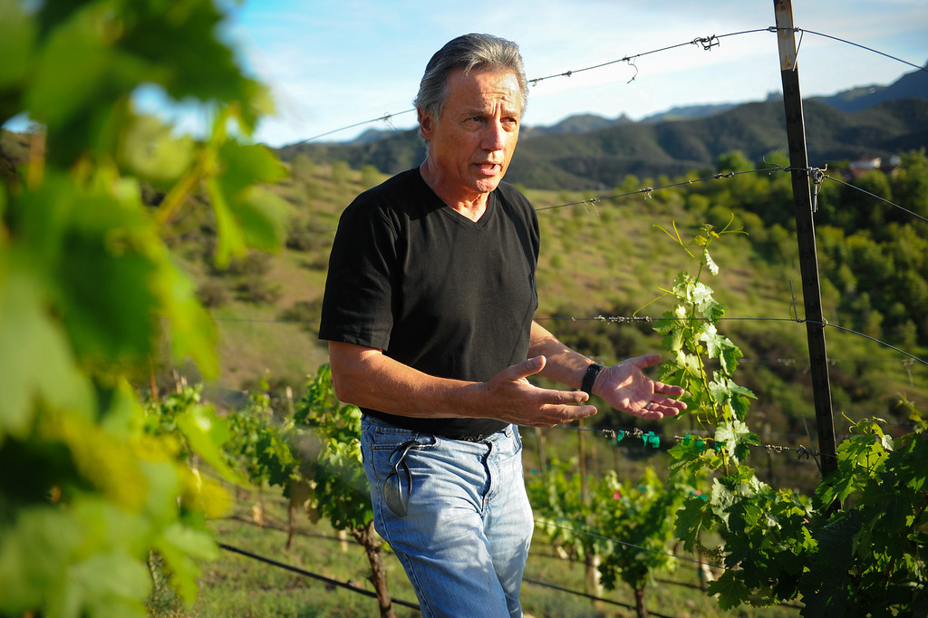 . Chet Schreiber talks about the vineyard at his Westlake home, Thursday, April 24, 2014. (Photo by Michael Owen Baker/L.A. Daily News)