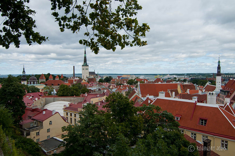 tallinn-estonia-view-1154.jpg