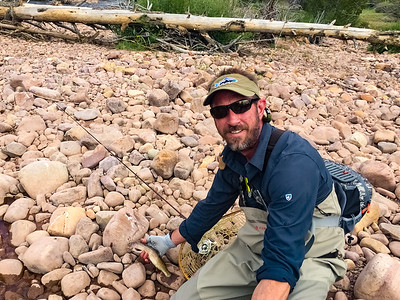 East Fork Blacks Fork River, High Uintas Trip 1 July 2018