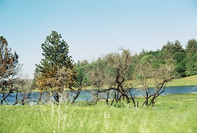Cuyamaca Rancho State Park: Trips