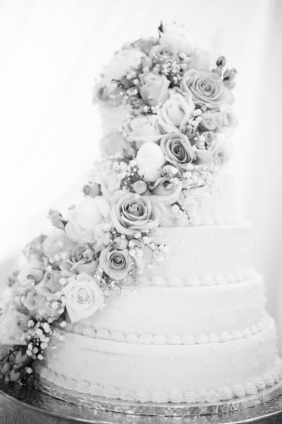 0810_Josh+Lindsey_WeddingBW.jpg