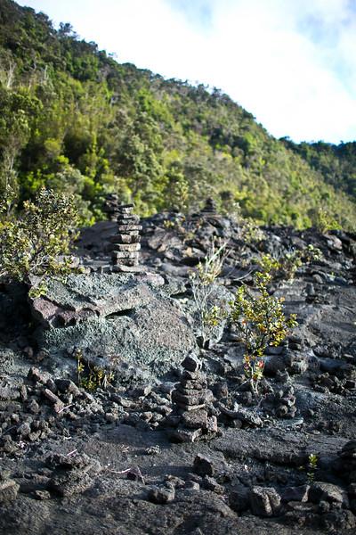 Hawaii_volcano_1177.JPG