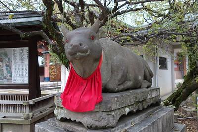 Kitano Tenman-gū, Kyoto 2013