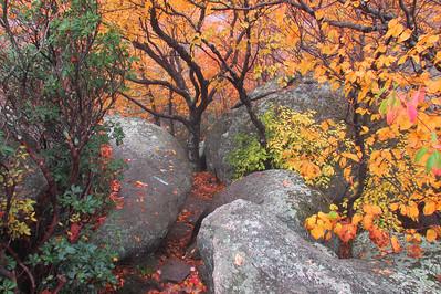Virginia's Shenandoah National Park October 2011