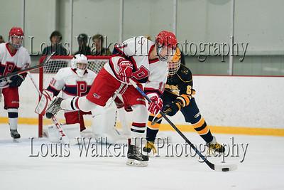 2018-19 High School Hockey