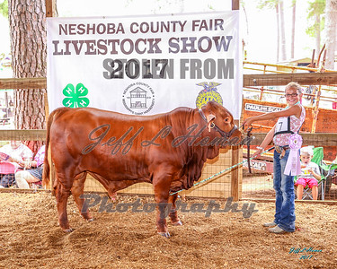 2017 Neshoba County Fair